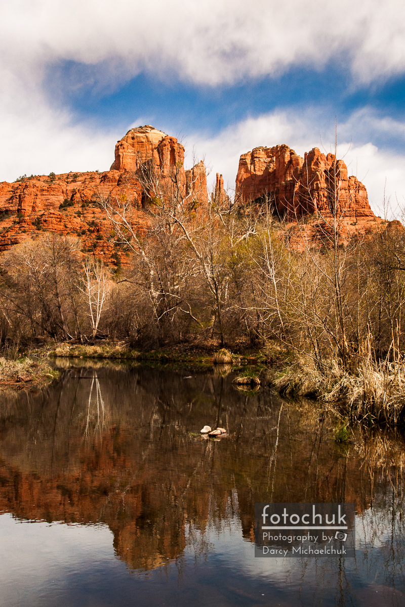 Cathedral Rock Reflections Portrait 1