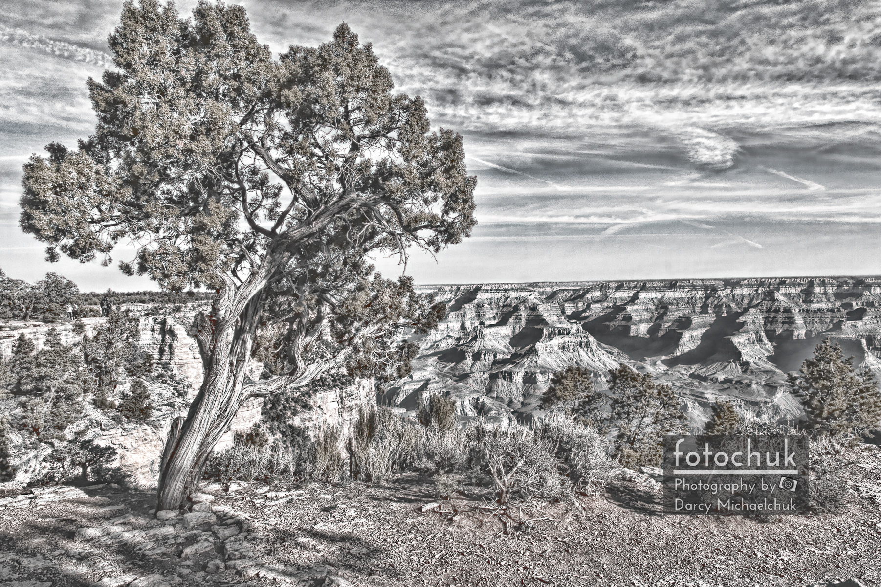 Digital Sketch Overhangs the Grand Canyon