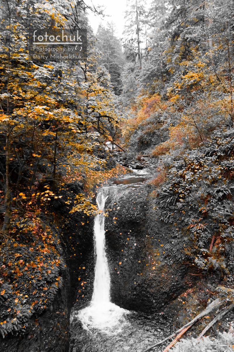 Middle Oneonta Falls with Selective Saturation