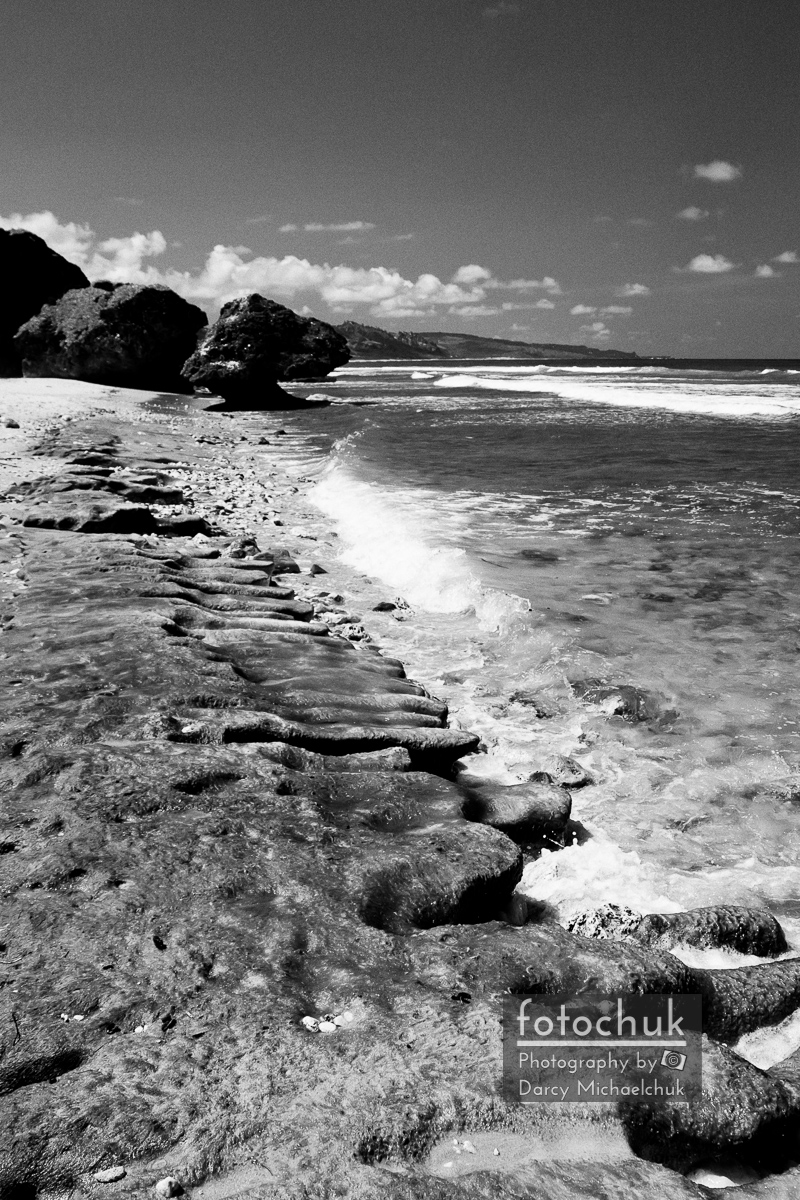 Small Barbados Waves Bw