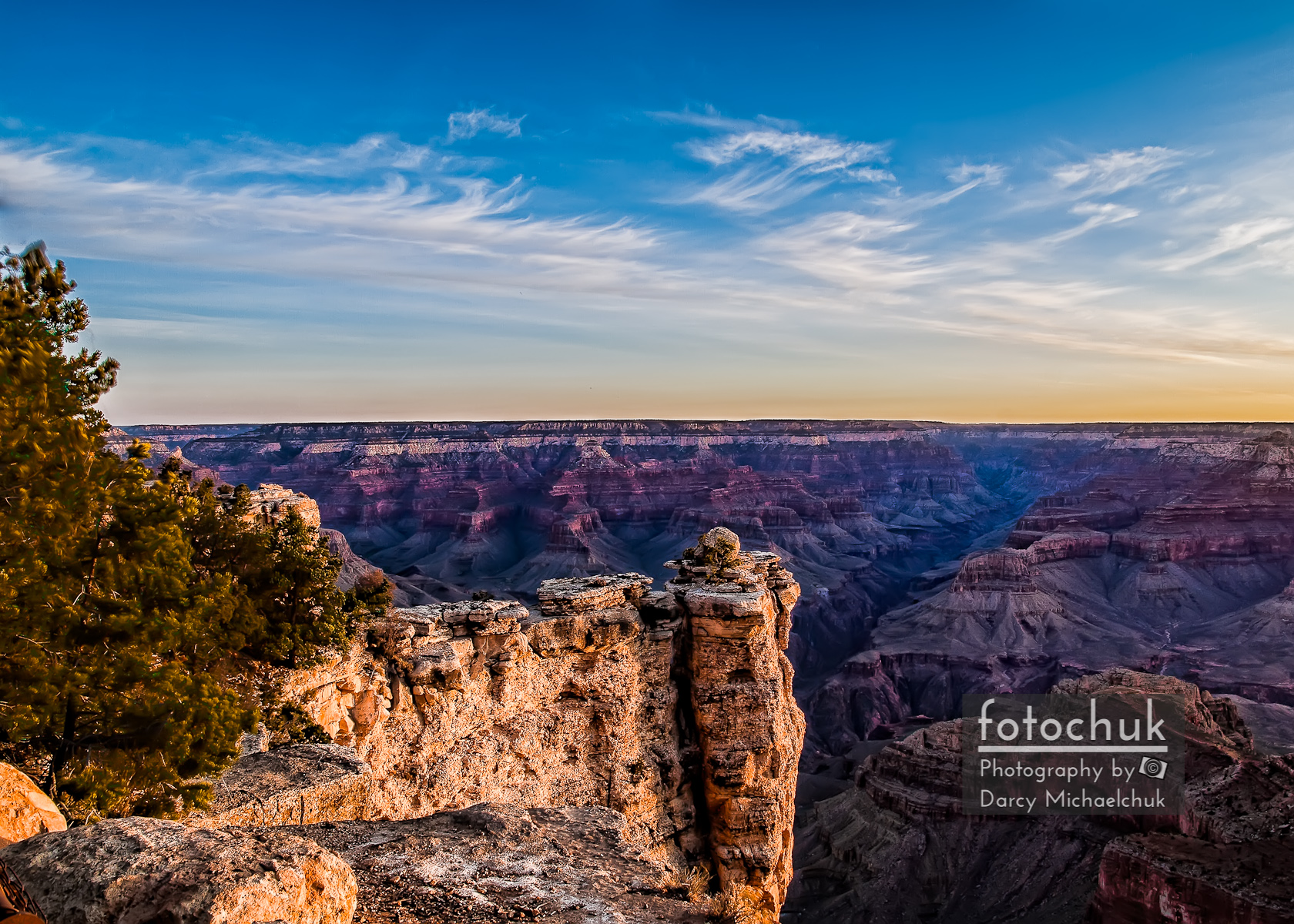 Swaying Tree Over Grand Canyon