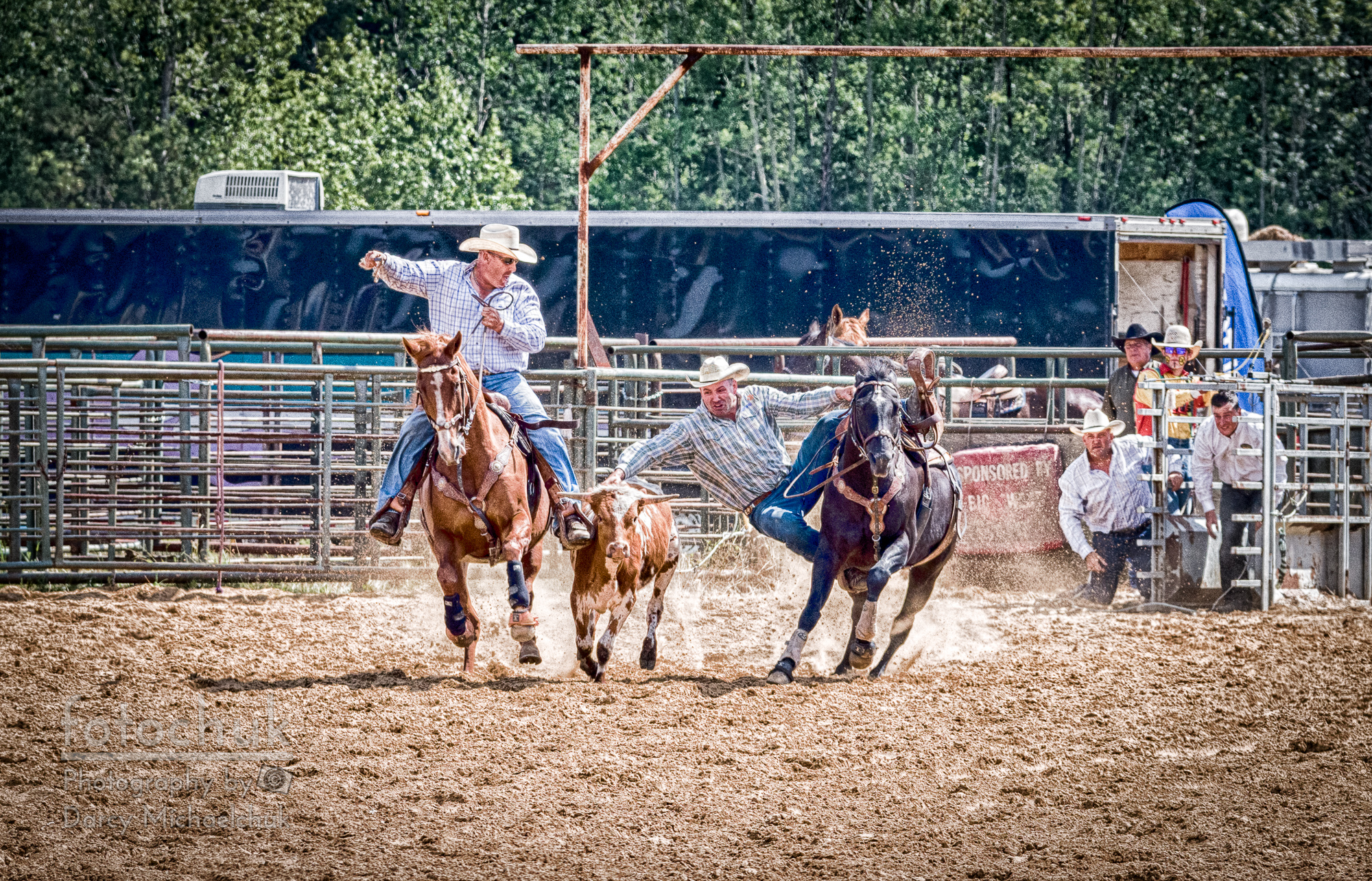 buy Steer Wrestling with an Audience canvas print