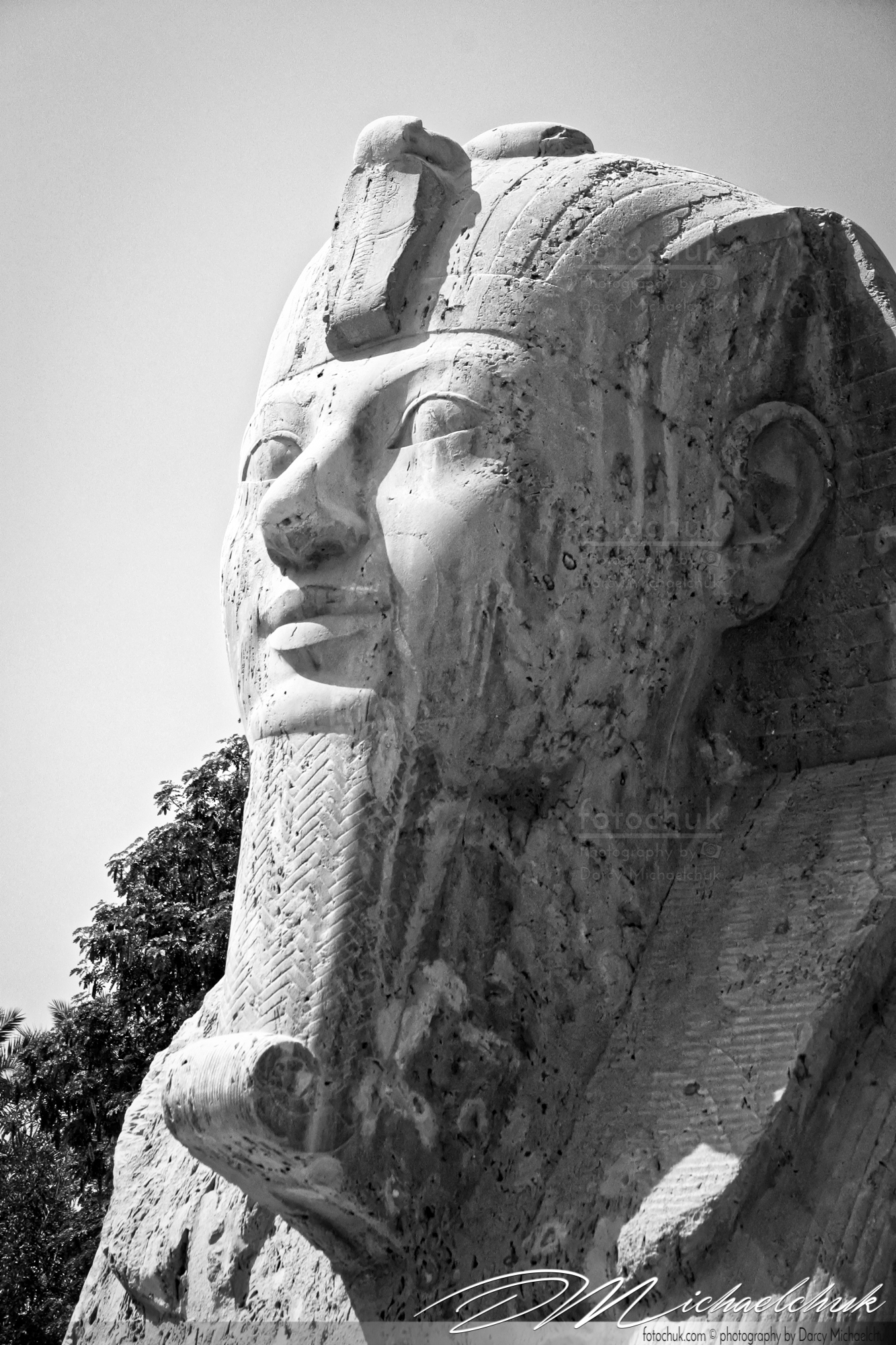 Small Sphinx bw